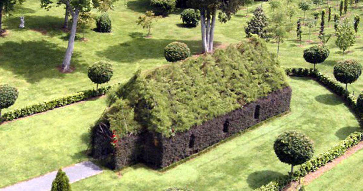 Man builds a church using living trees. It's beautiful.