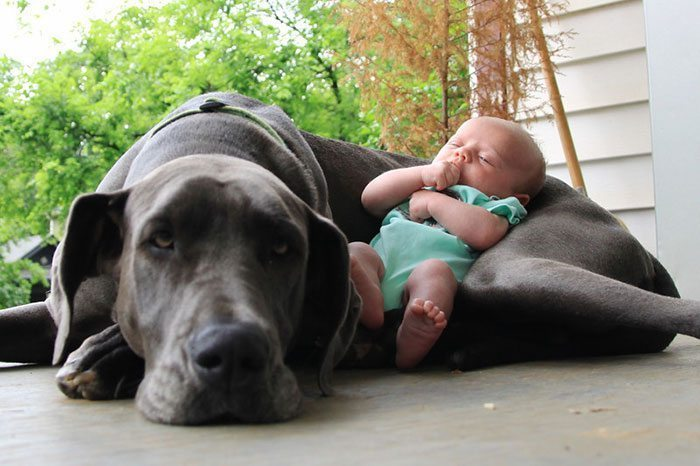 kids-with-dogs-19__700