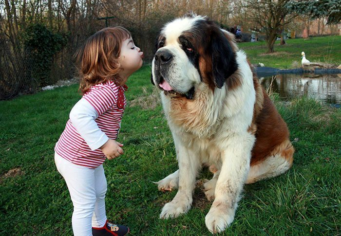 kids-with-dogs-68__700