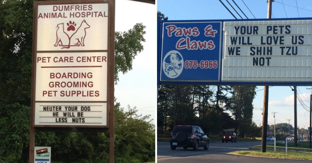 funny_vet_signs_featured