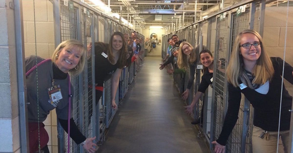 shelter_celebrates_empty_kennels_featured
