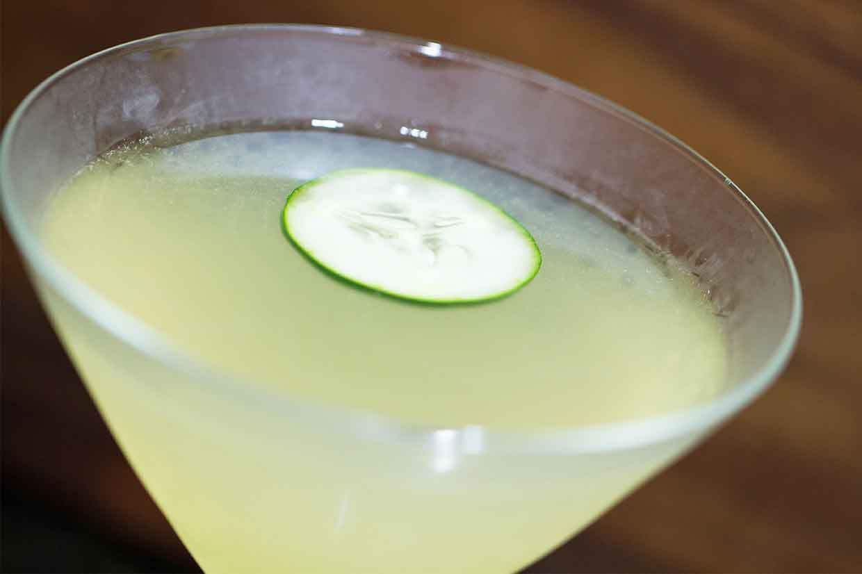 Enjoy a relaxing cocktail without feeling any guilt here for Best gin for martini recipes
