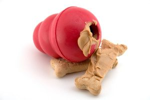 What Food Do You Put In A Dog Kong