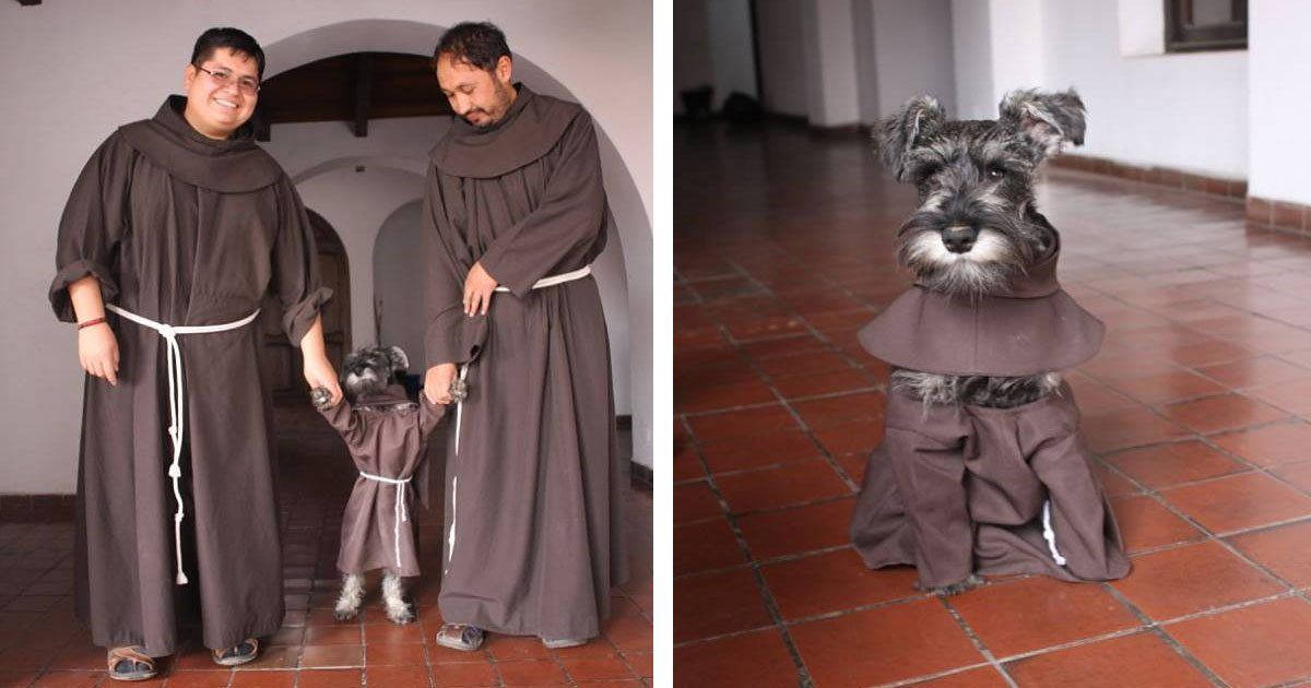 monastery_adopts_dog_featured