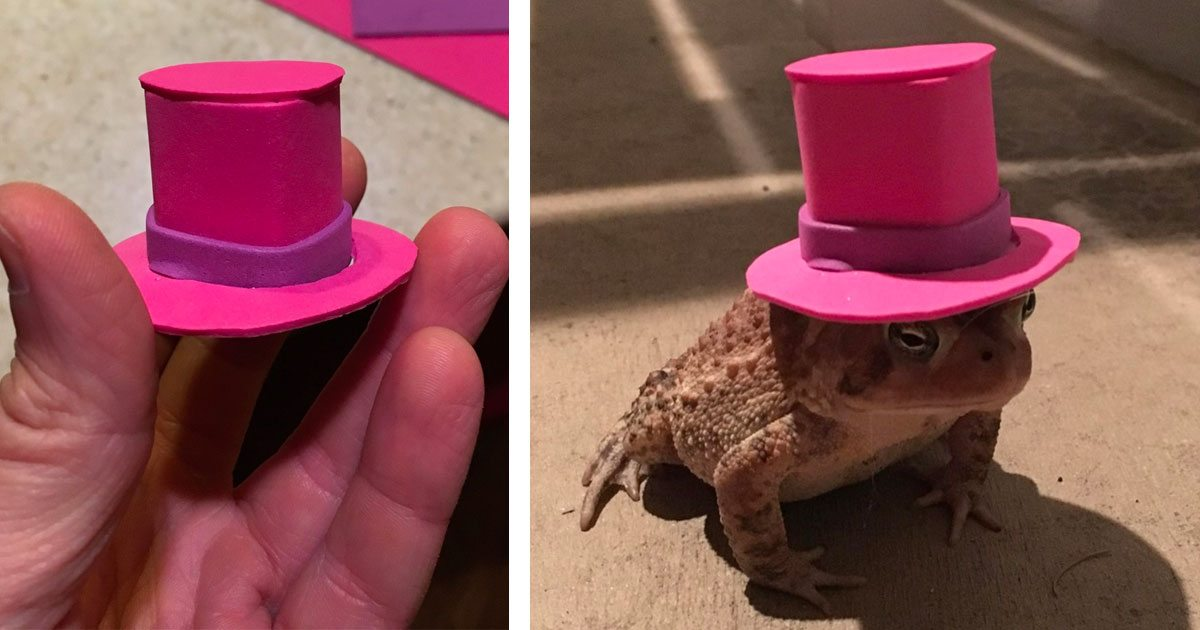man_makes_toad_hat_featured