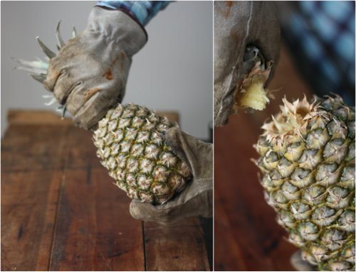 twisting-off-pineapple-top