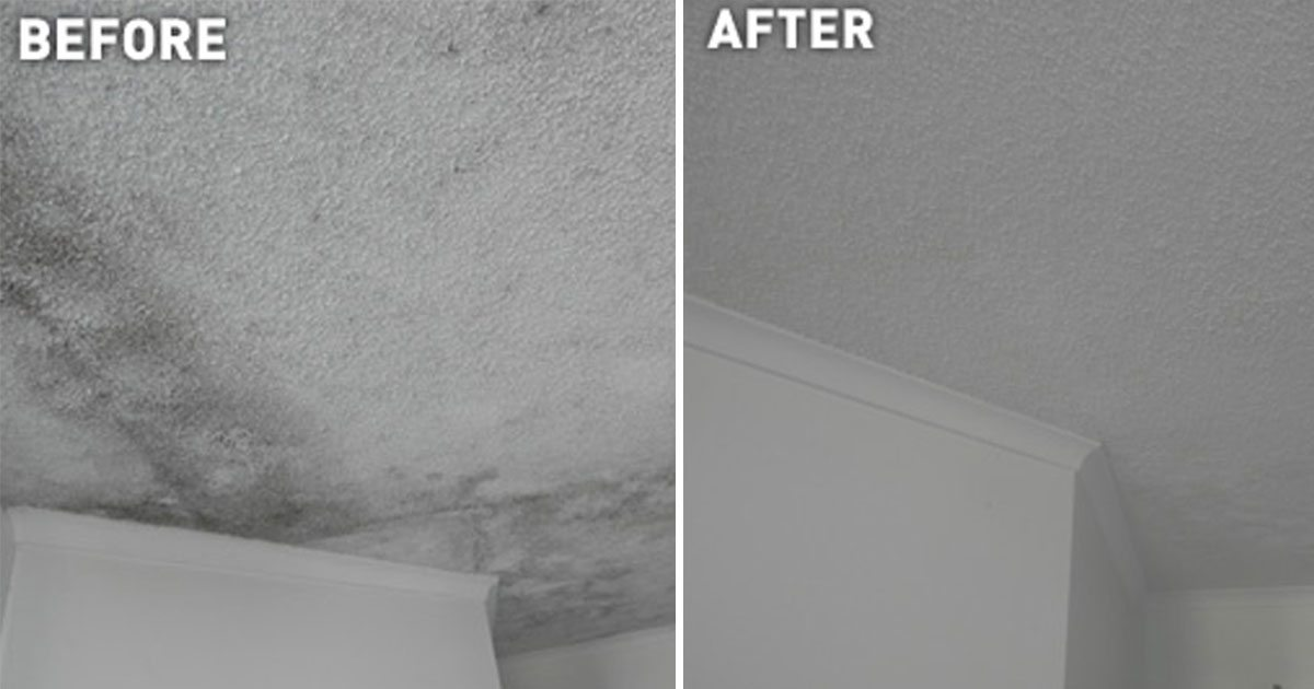 ways_to_prevent_mold_featured