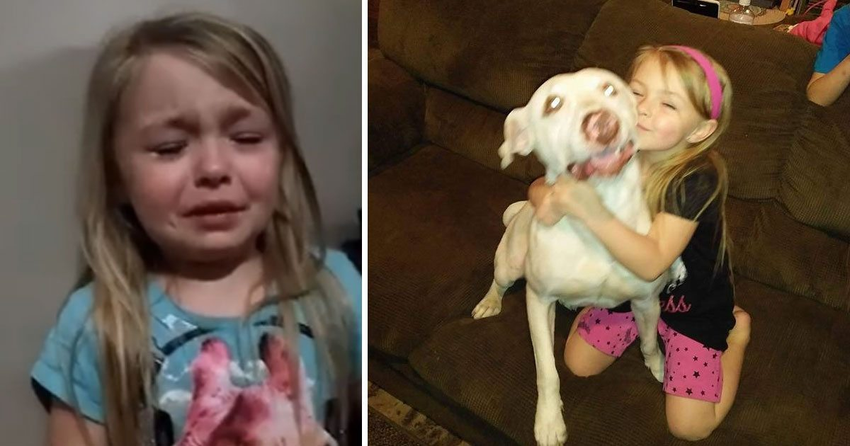 girl_finds_dog_after_plea_goes_viral_featured