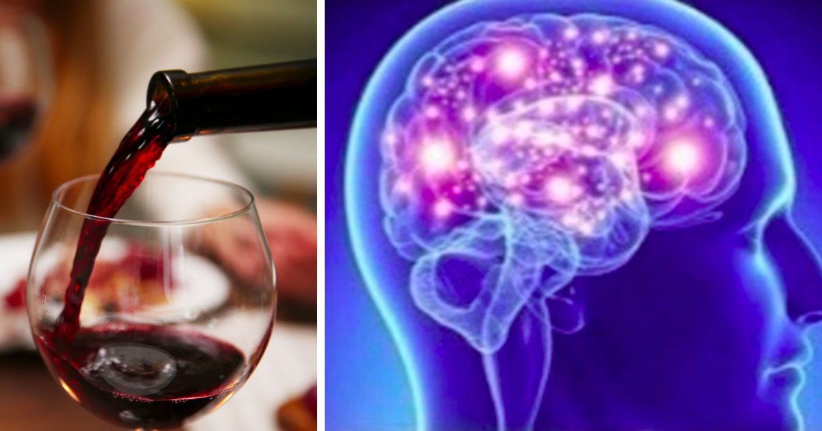 wine_makes_you_smarter_featured