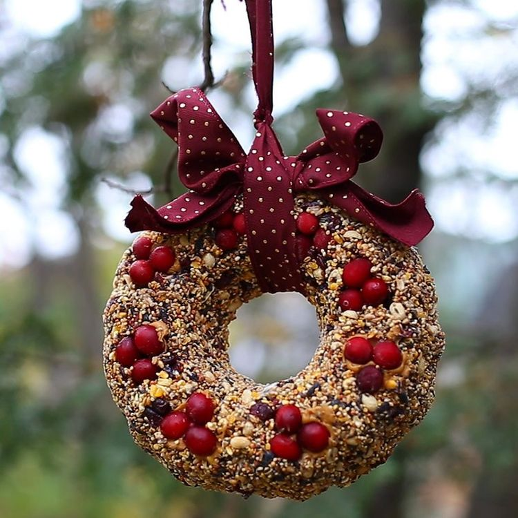 diy_birdseed_wreath_7