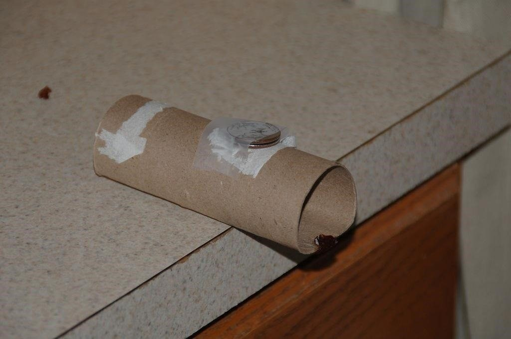 Start Saving Your Paper Towel Rolls Here Are 15 Creative