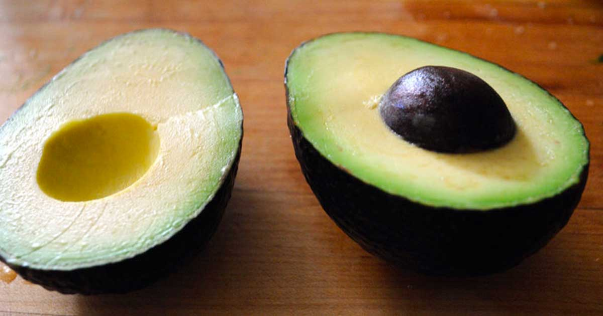 avocados_fresh_featured