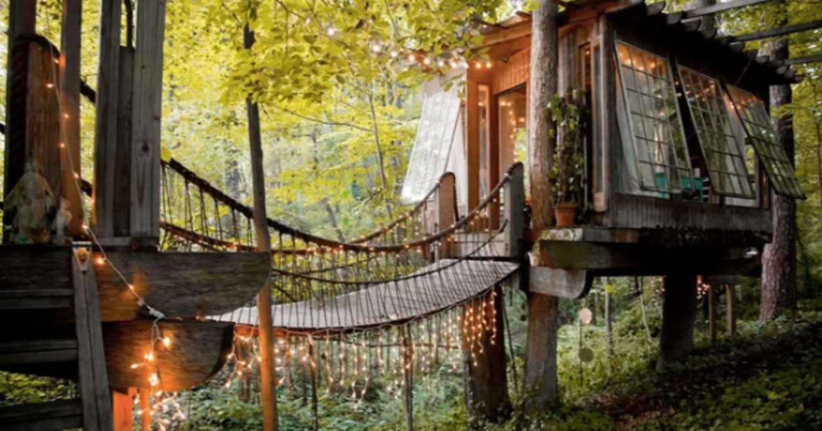 tree_house_rentals_featured