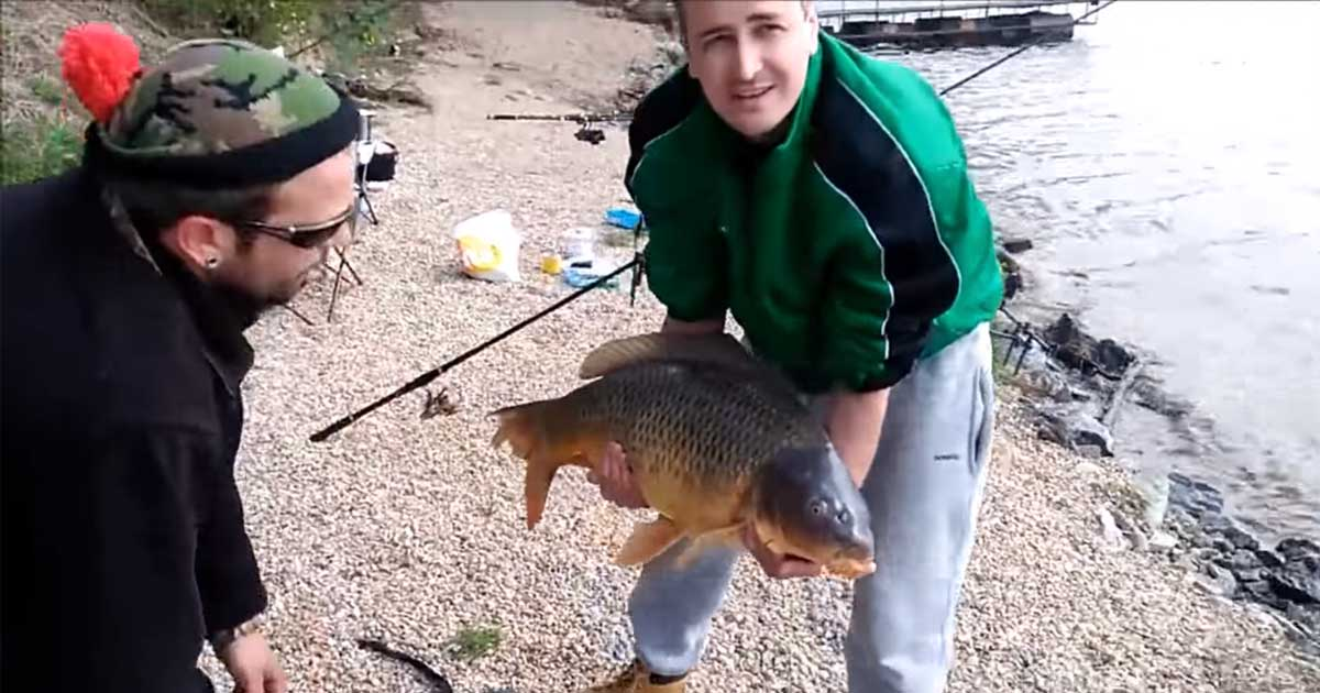 carp_escapes_man_featured