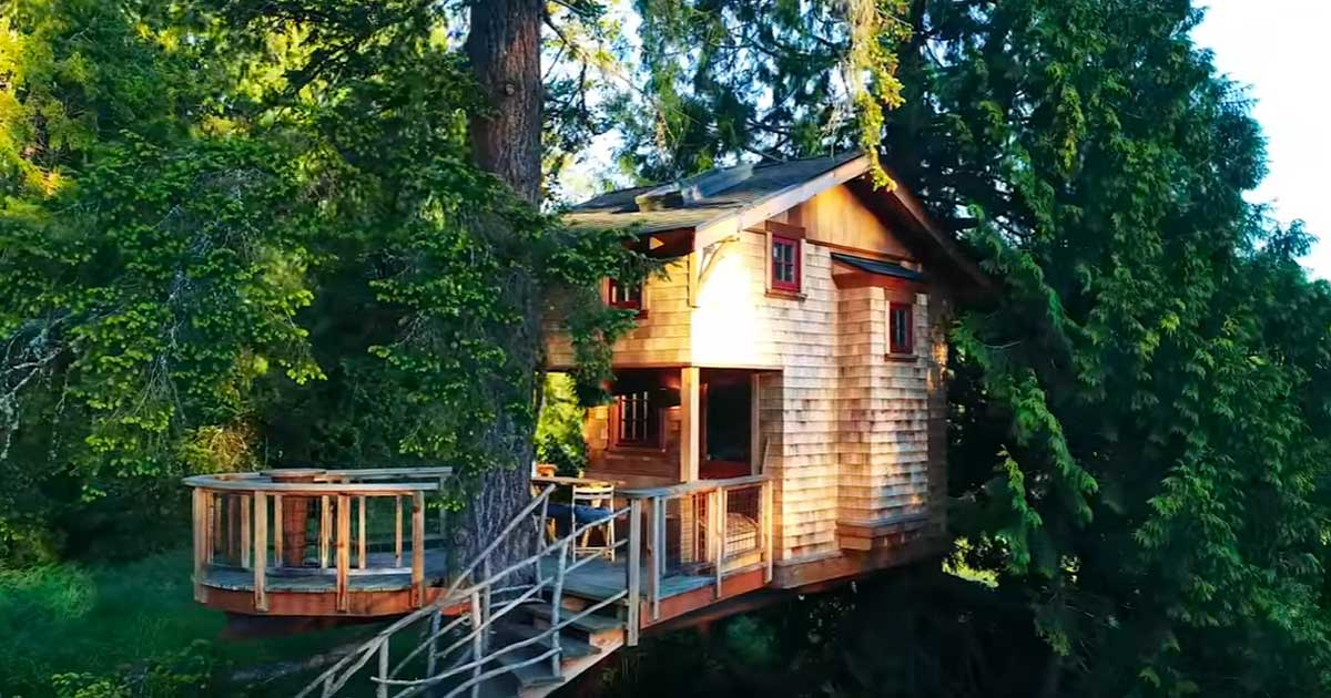 Treehouse Tour Living Big In A Tiny House