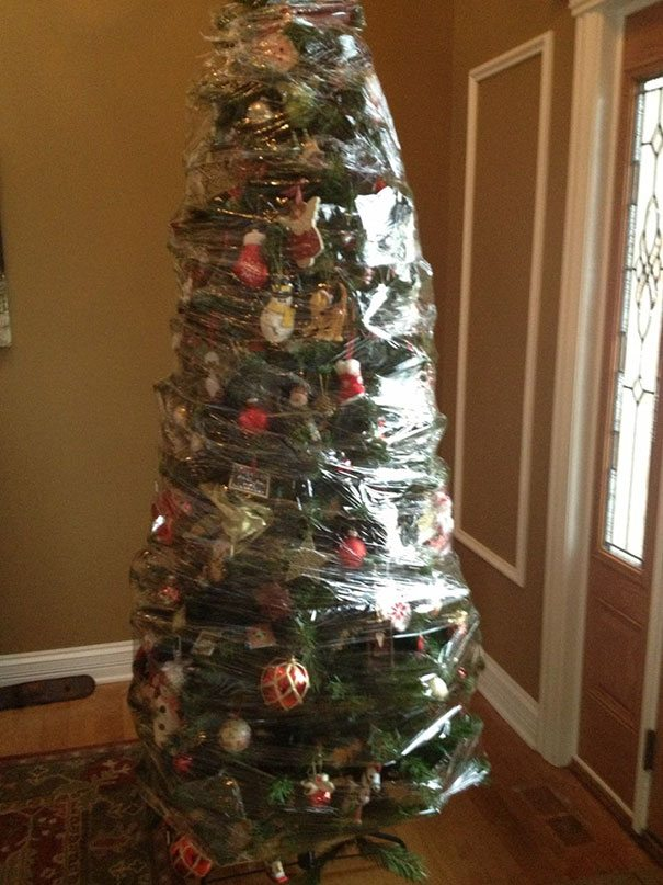 35 Hilarious Times Humans Had To Protect Their Decorations