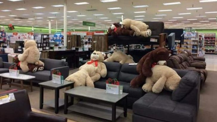 Elegant Someone Re Arranged Teddy Bears At A Store In A Very NSFW Way
