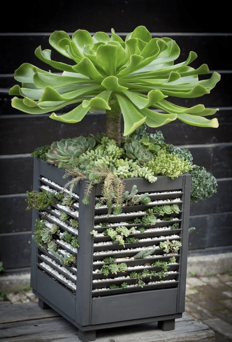 create planter from old shutter ideas