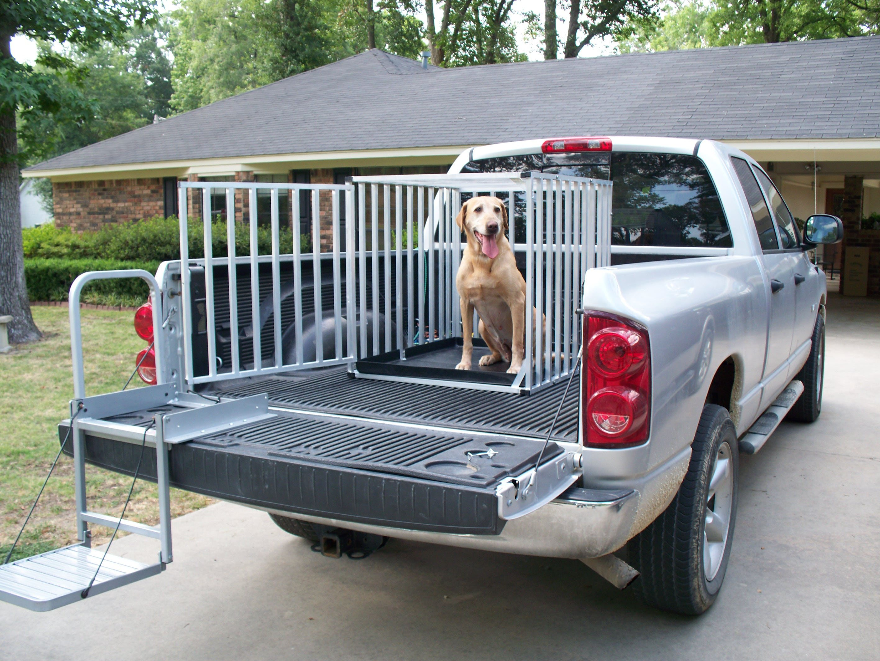 Psa Keep Dogs Out Of Truck Beds 100 000 Die Annually