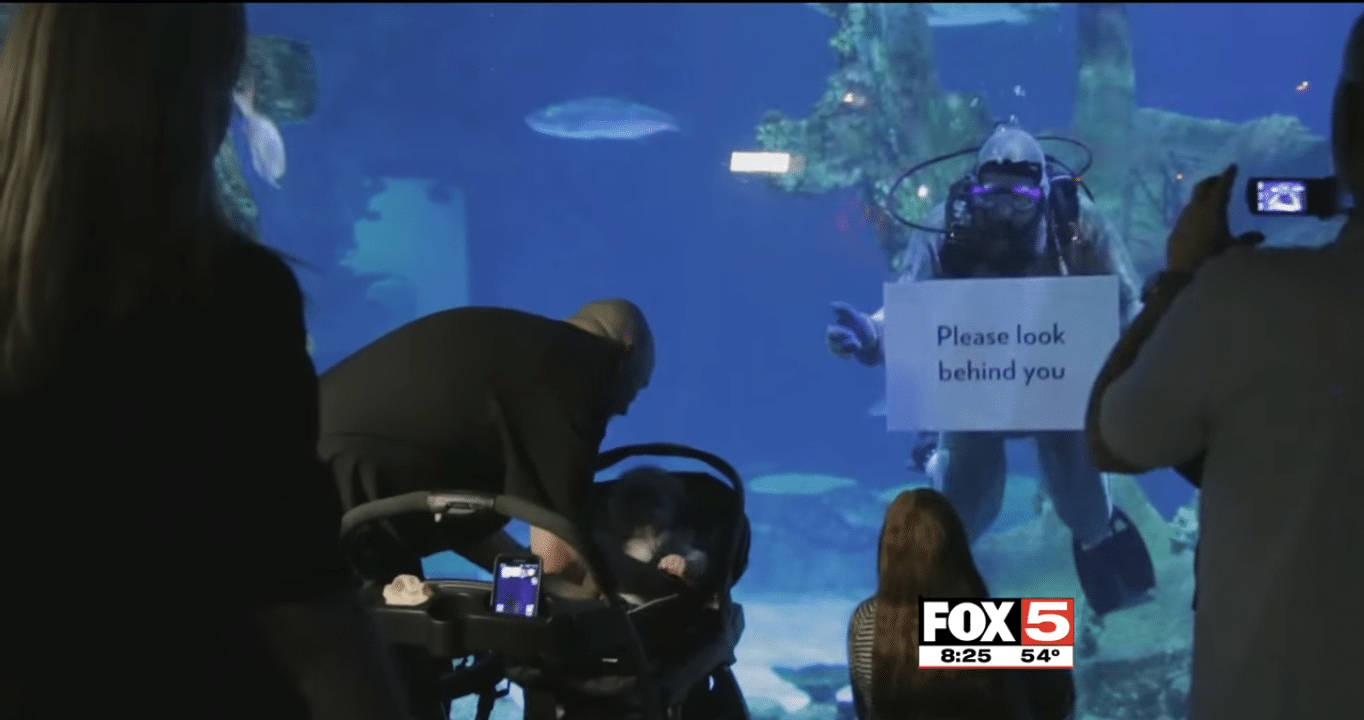 julie-mauldin-aquarium-soldier-surprise