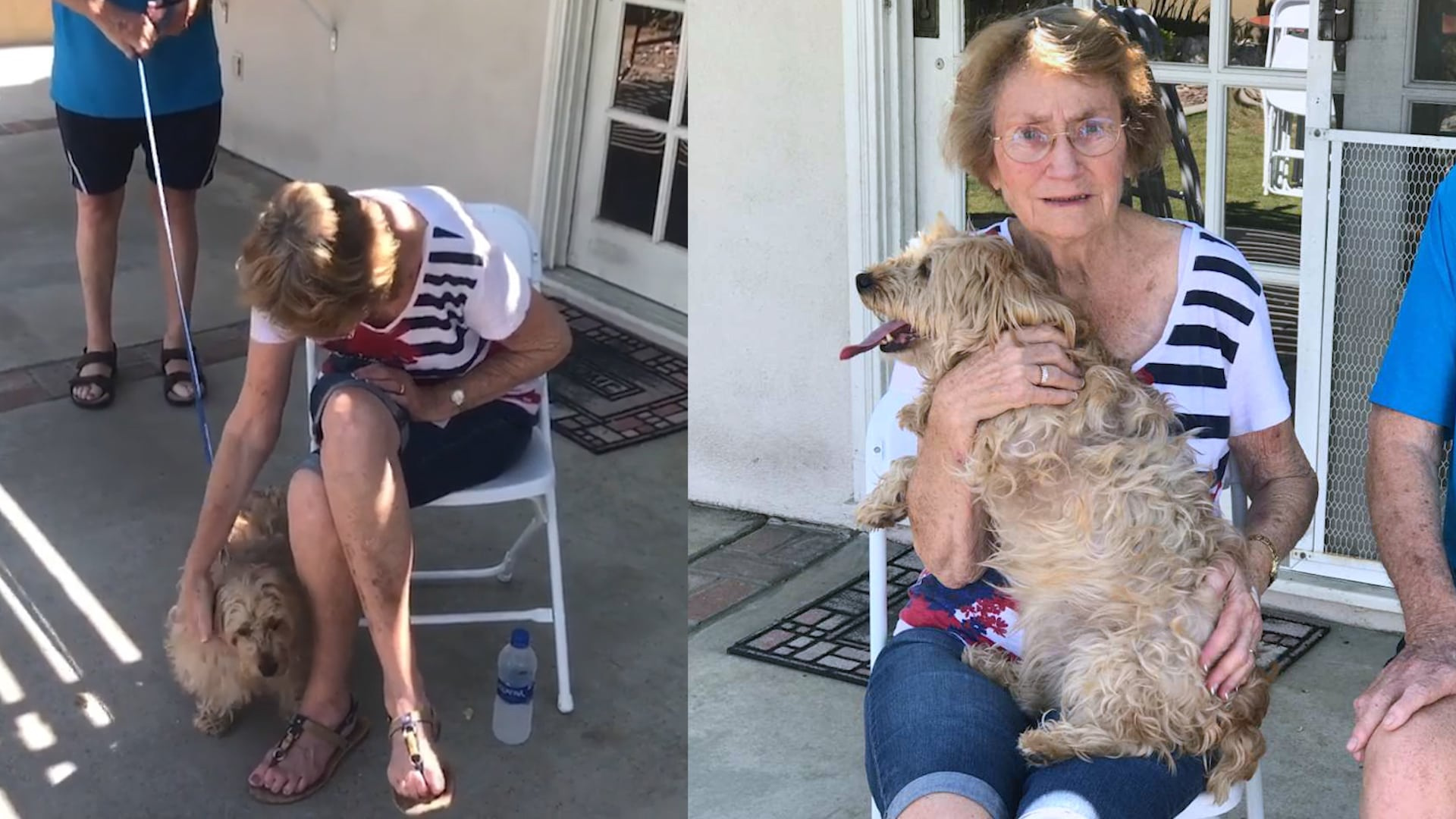 http://www.lovewhatmatters.com/heart-bursting-alert-do-i-have-a-dog-grandma-with-alzheimers-surprised-with-rescue-dog-after-begging-her-husband-for-years/