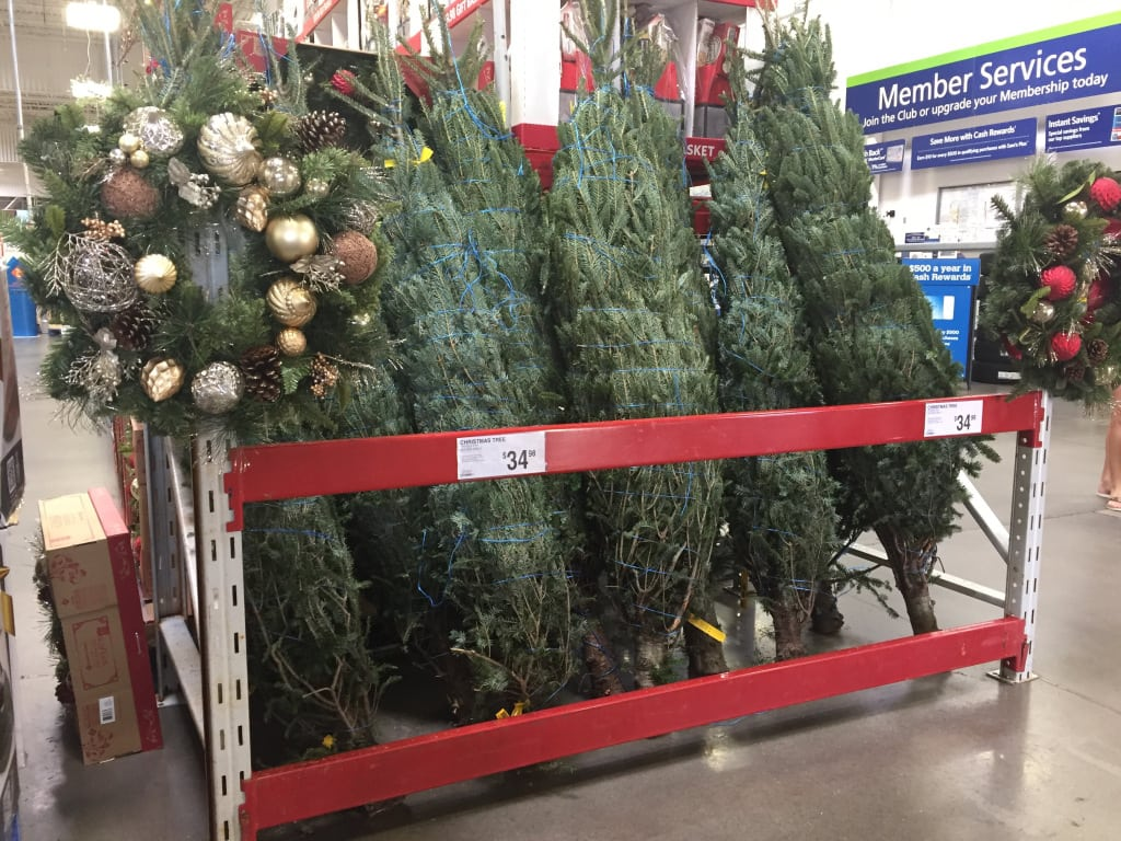 hip2save source hip2save - Sams Club Christmas Decorations
