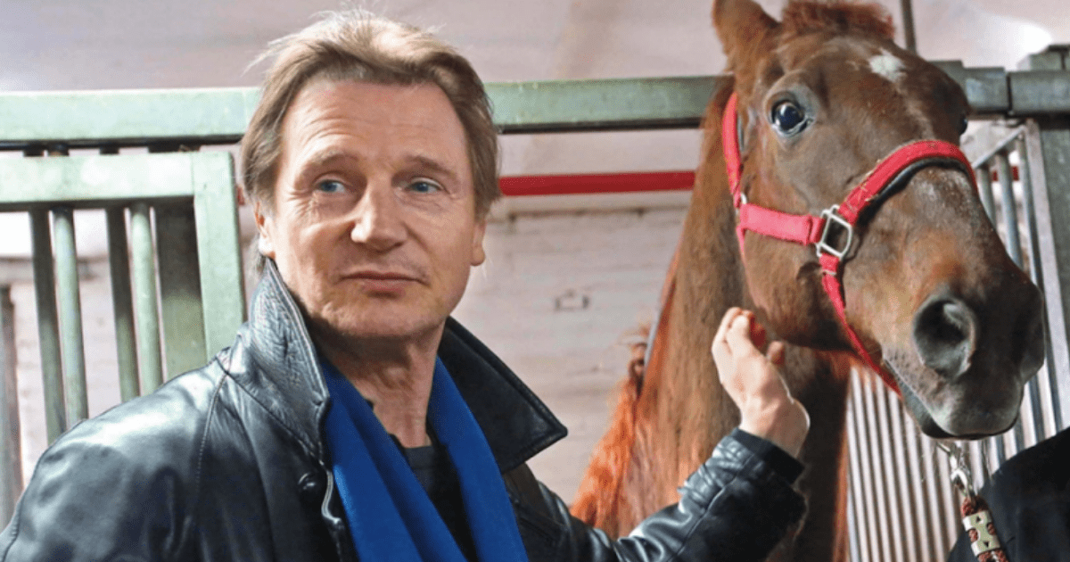 liam-neeson-says-horse-remembers-him-from-previous-film