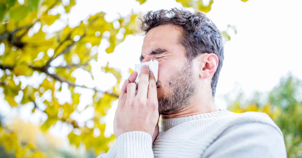 https://www.themanual.com/culture/how-to-get-rid-of-allergies/
