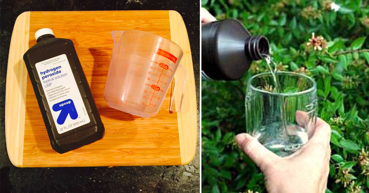 50+ Ways To Use Hydrogen Peroxide At Home