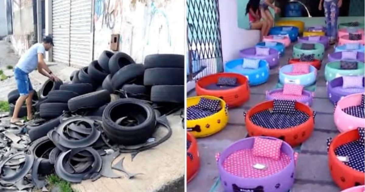 Tires Into Beds For Stray Animals