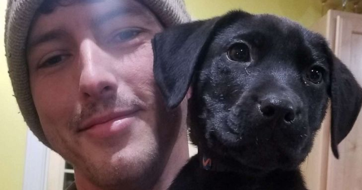deaf man adopts deaf puppy and teaches him sign language