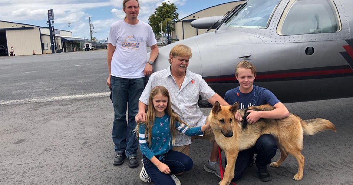Stolen Two Years Ago, Dog Makes The 2,000 Mile Trip Home