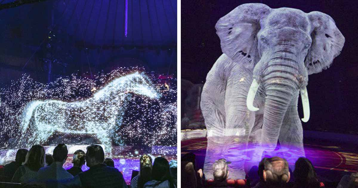 https://www.boredpanda.com/animal-holograms-circus-roncalli-germany/