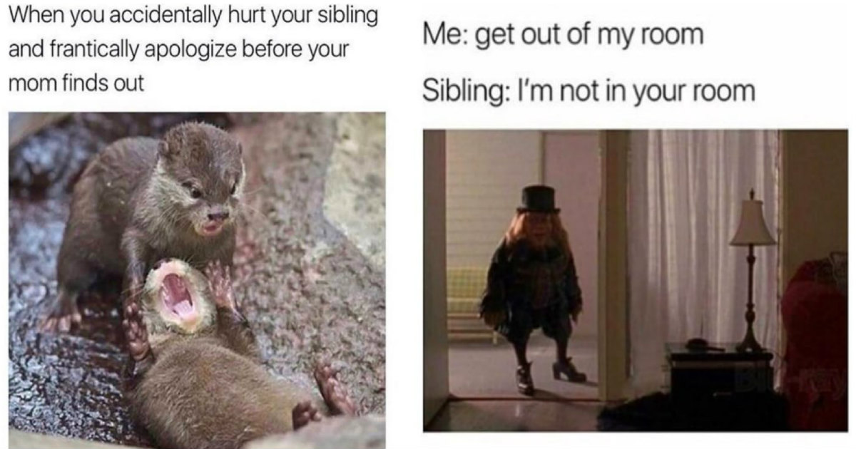 65 Funny Sibling Memes For Brothers And Sisters To Laugh At
