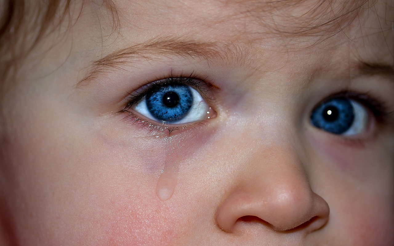 https://pixabay.com/photos/children-s-eyes-eyes-blue-eye-1914519/