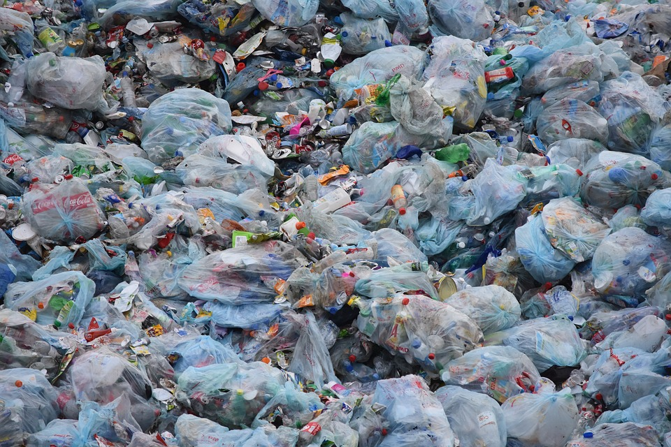 Plastic_Bag_Waste