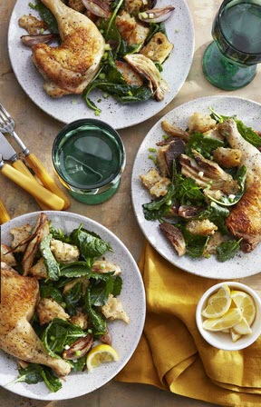 Cider-Braised Chicken-and-Fennel Panzanella
