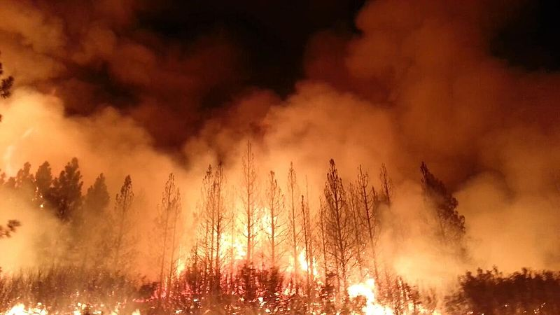 https://en.wikipedia.org/wiki/File:The_Rim_Fire_in_the_Stanislaus_National_Forest_near_in_California_began_on_Aug._17,_2013-0004.jpg