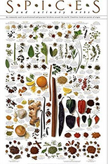 Spices_And_Herb_Poster