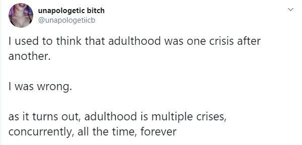 Image result for i thought adulthood was one crisis after another, now i know it's