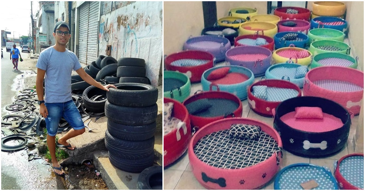 Man collects old tires to turn them into cozy beds for stray dogs and kittens