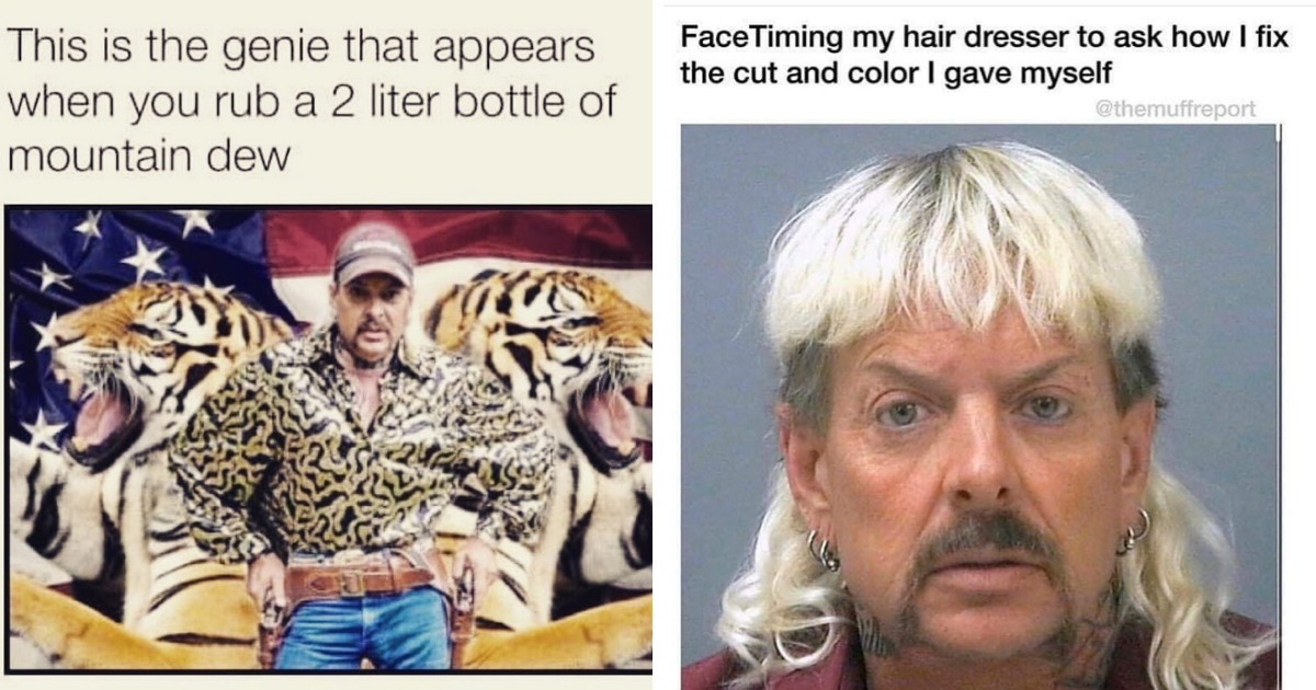 10 Hilarious Tiger King Memes That We All Need Right Now