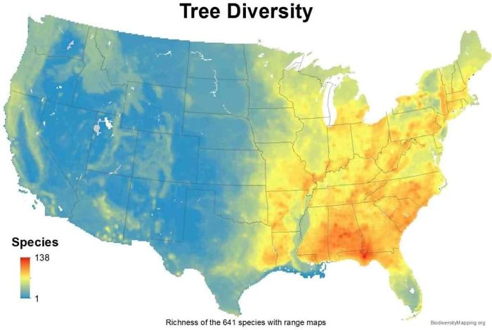 https://www.reddit.com/r/MapPorn/comments/hceg1g/usa_tree_diversity/