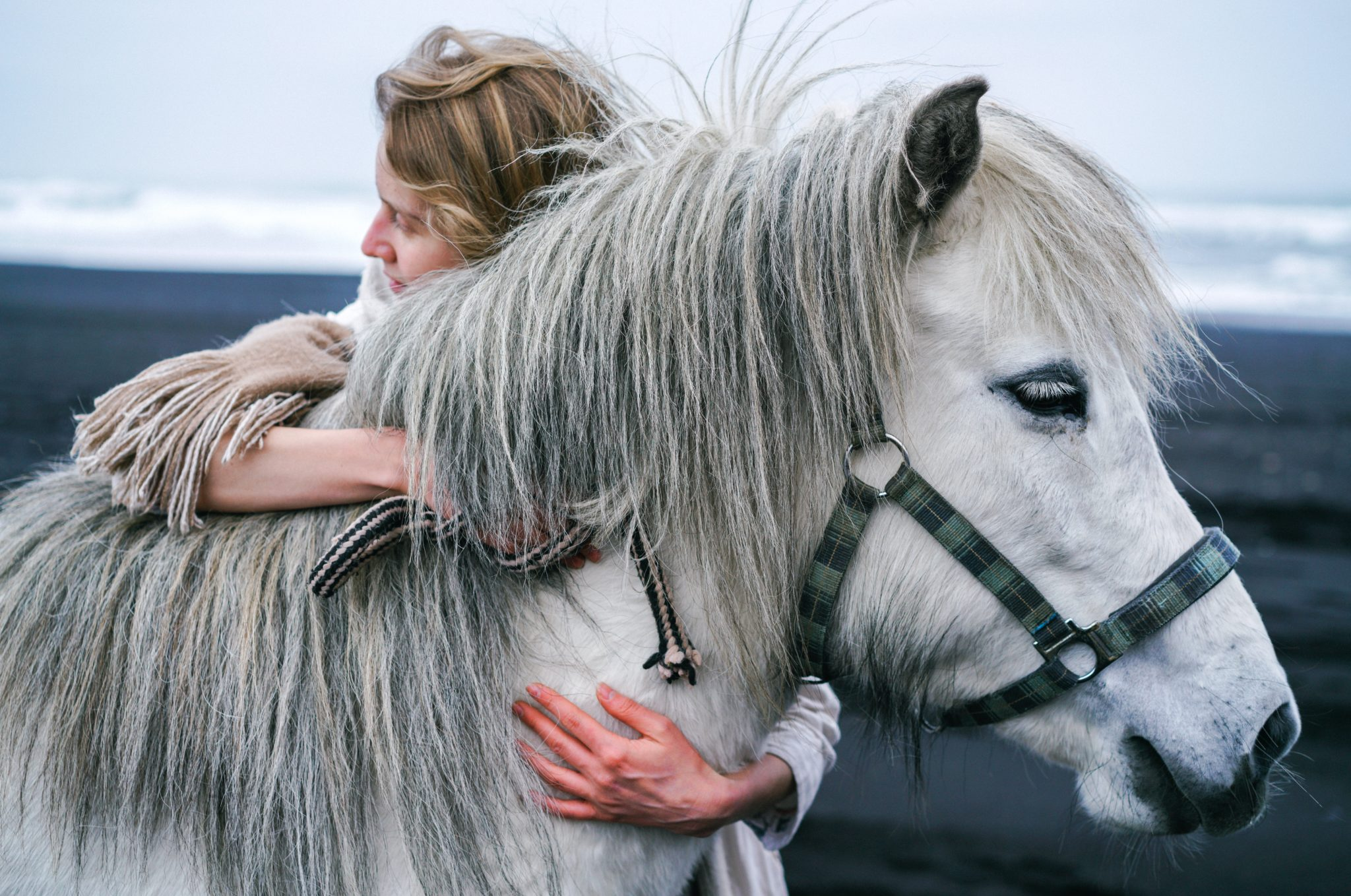 https://www.pexels.com/photo/woman-embracing-gently-gray-horse-on-beach-4344258/